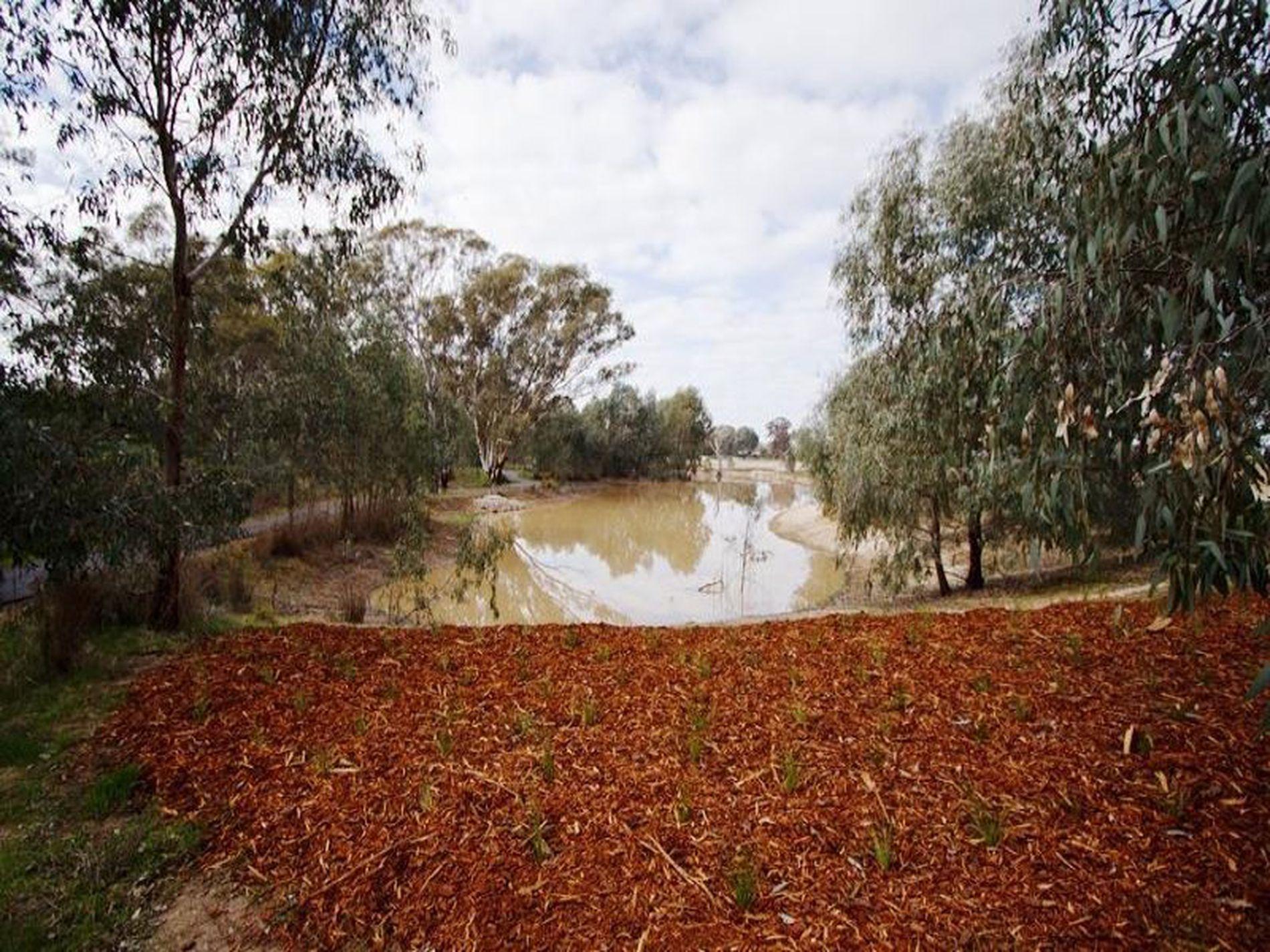 Collyn-Dale , Wangaratta