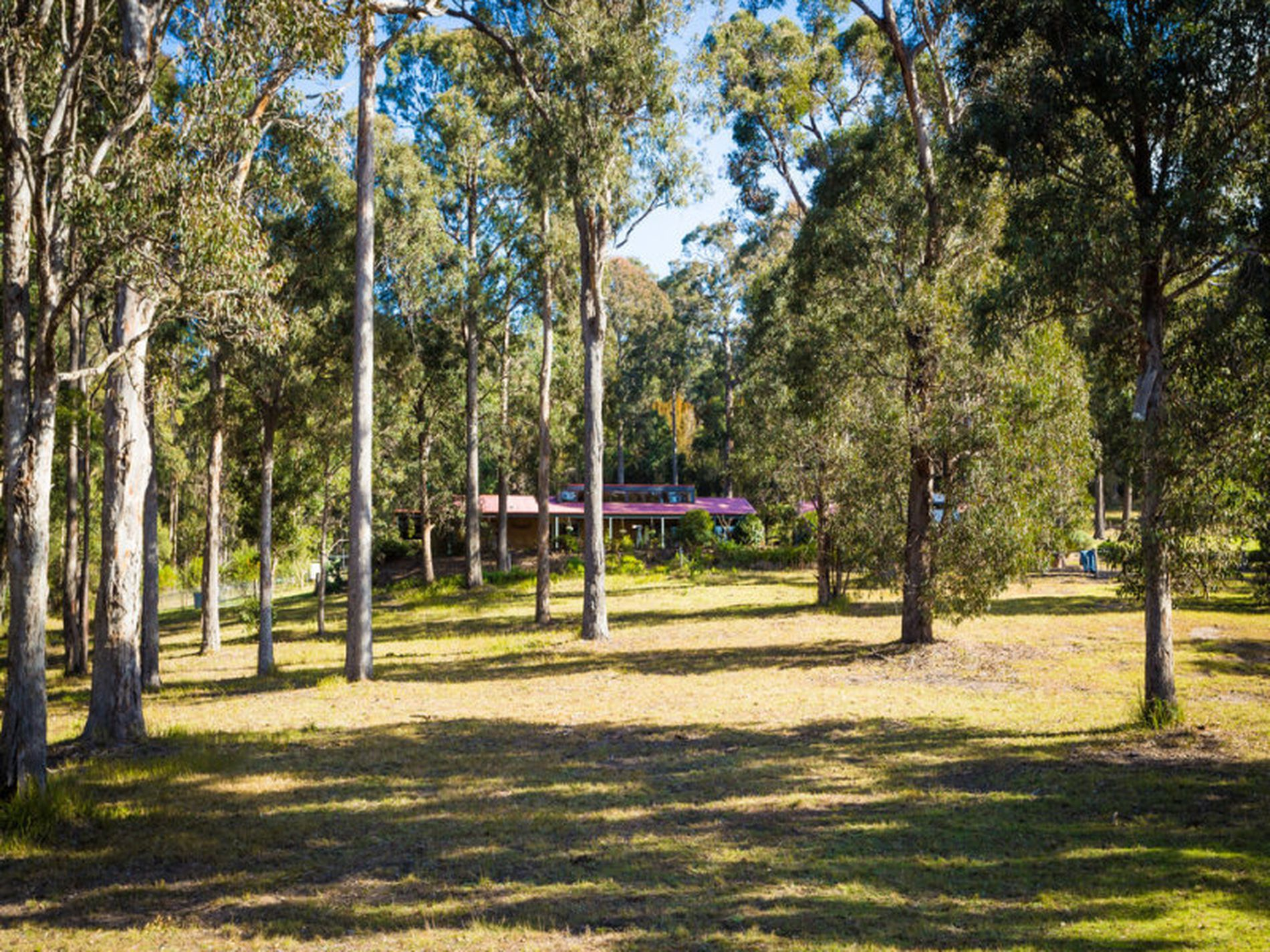 3060 Princes Highway, Millingandi
