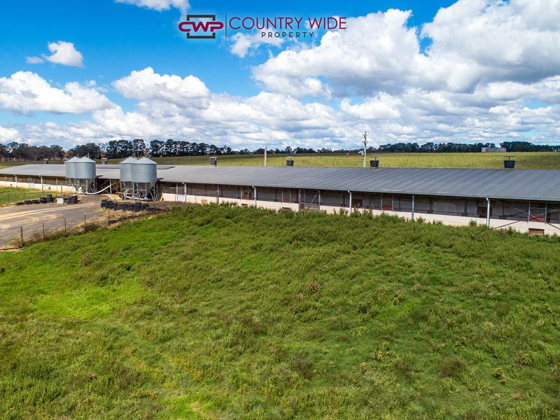 28 Whitmore Road, Glen Innes