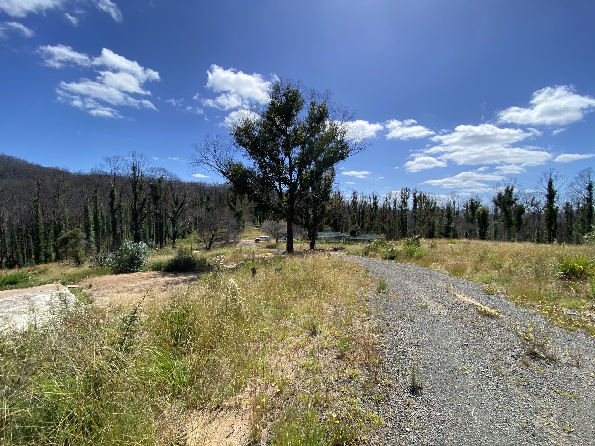 Lot 2 Devils Hole Road, Wyndham