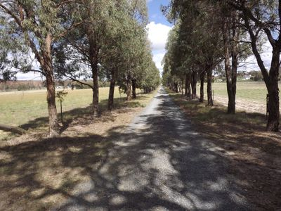 172 Paling Yard Road, Wallangarra