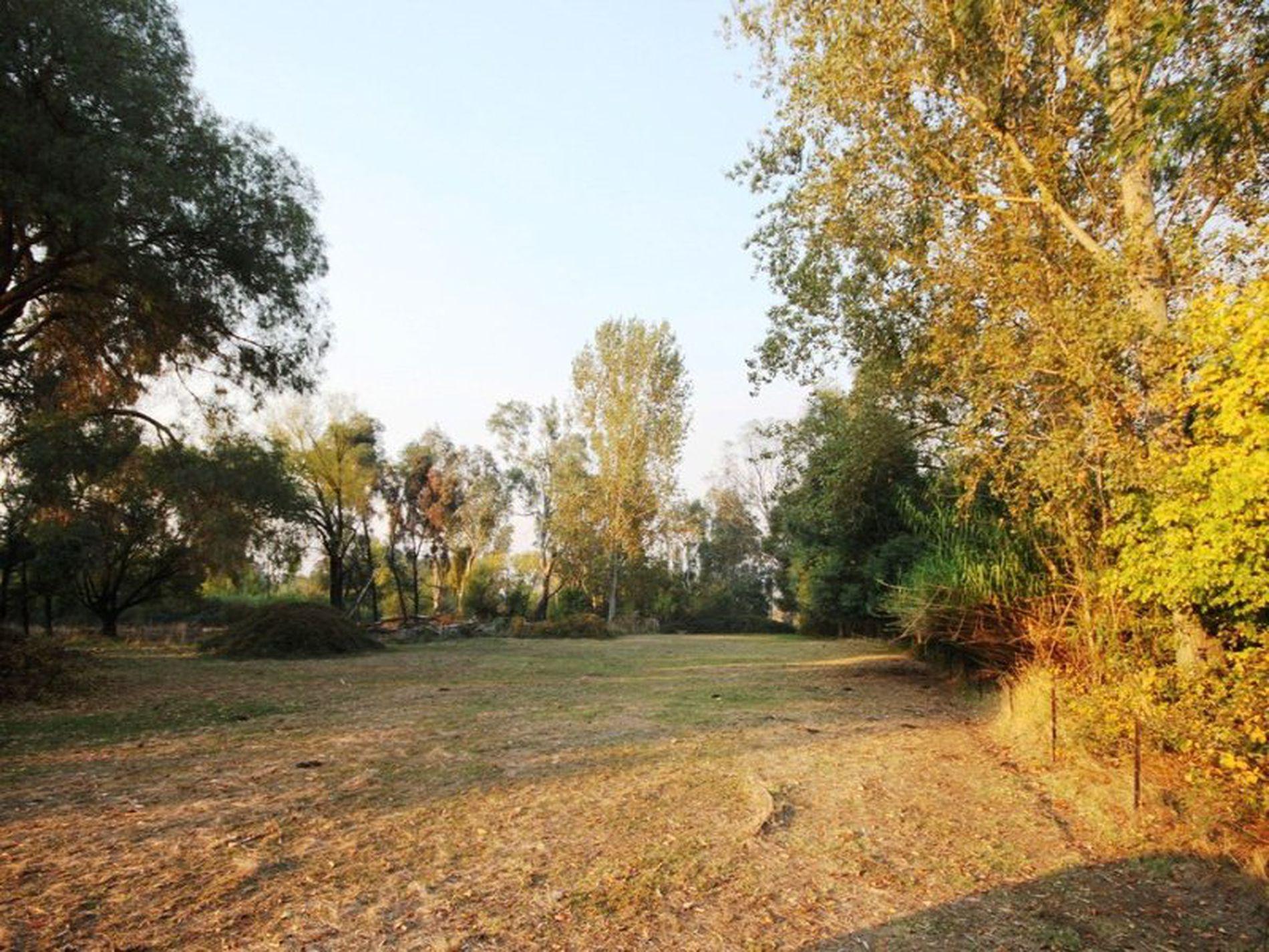 4433 Wangaratta-Whitfield Road, Whitfield