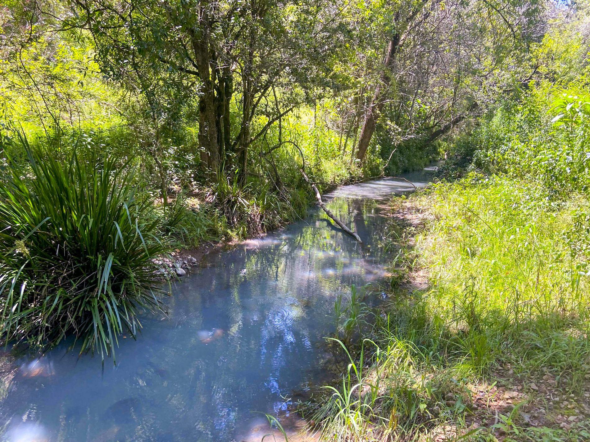 770 Mooral Creek Road, Strathcedar