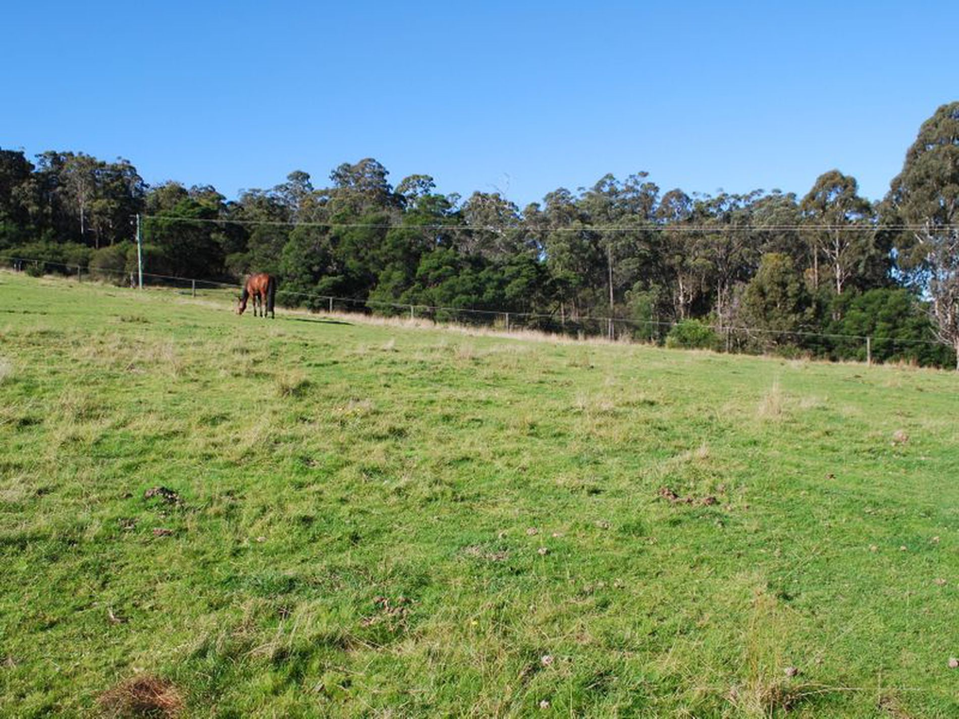 Lot 3 Karuka Close, Bald Hills