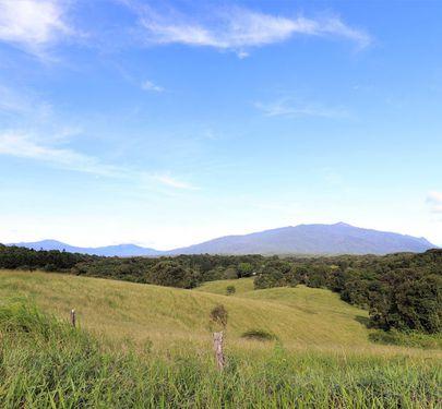30-46 Old Cairns Track, Topaz