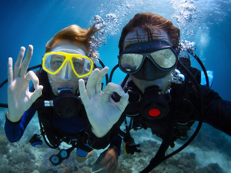 Scuba Diving School and underwater tour operator with multiple income streams.