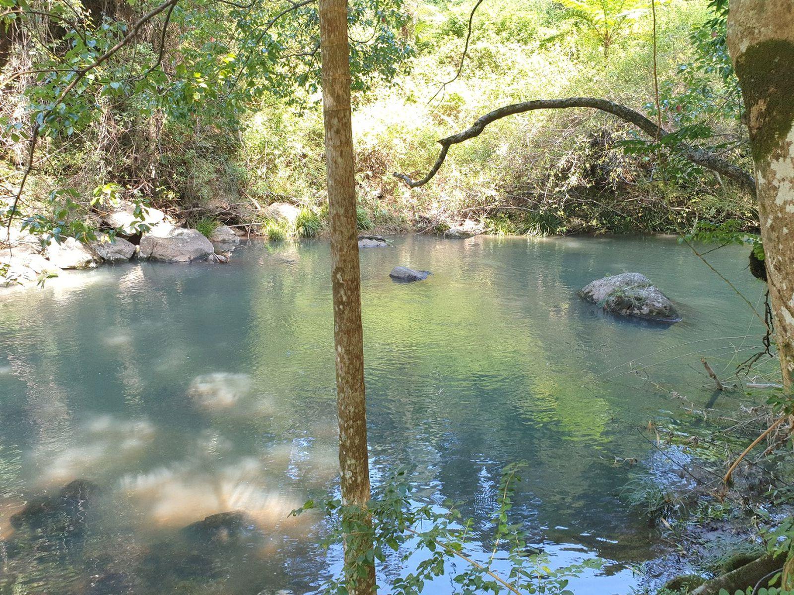 841 Wilsons Creek Road, Wilsons Creek