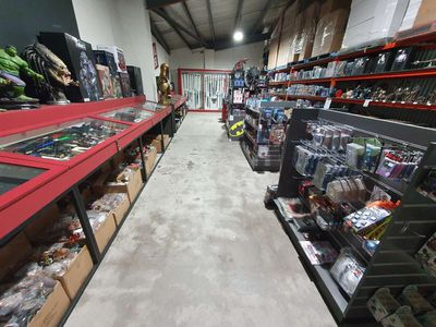 Coolest Online Collectables Business For Sale