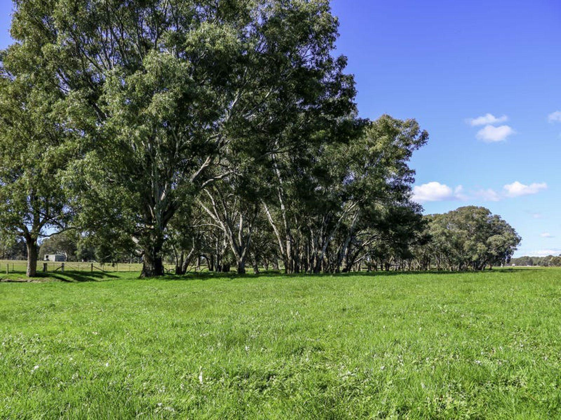 Laceby - Targoora Road, Wangaratta