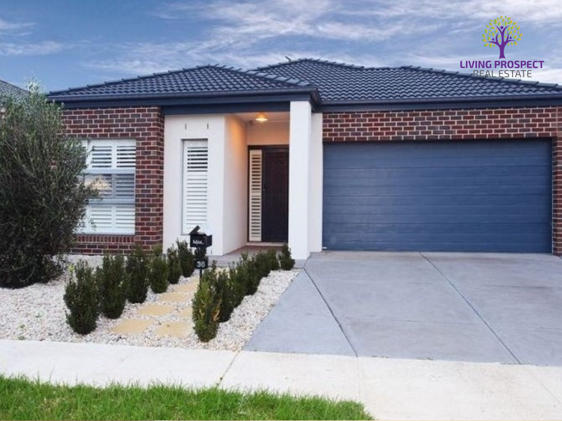 36 Canegrass Drive, Point Cook