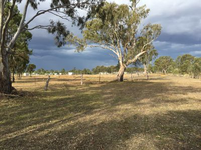 Lot 34 Voll Avenue, Oakey
