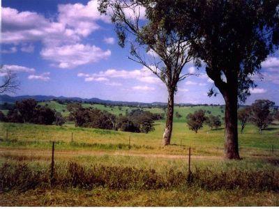 2777 Four Mile Creek Road, Panuara