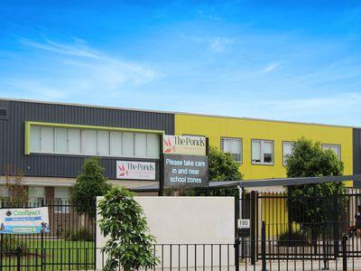20 Katoomba Street, The Ponds