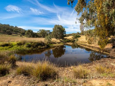 20 Stoneleigh Lane, Splitters Creek