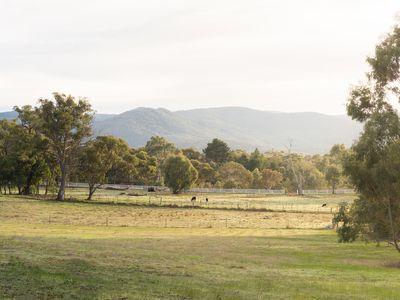111 Mount Macedon Road, Macedon