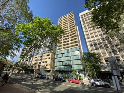 501 / 221 Miller street, North Sydney