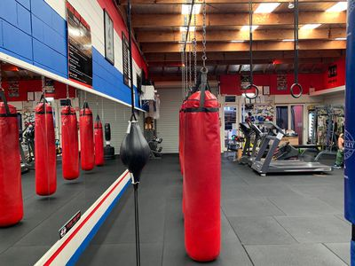 Boxing Gym Business For Sale Torquay