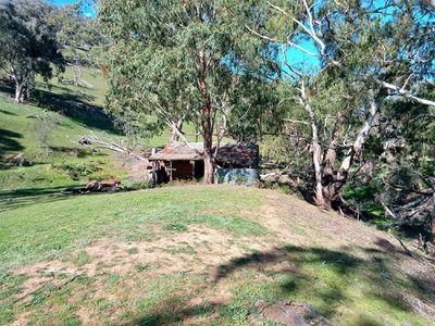 570 Bald Hills Creek Road, Tongio