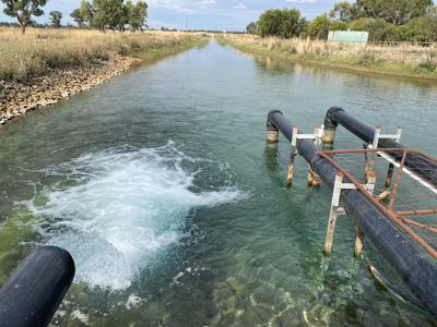 Lower Murrumbidgee Deep Groundwater Entitlements, Darlington Point