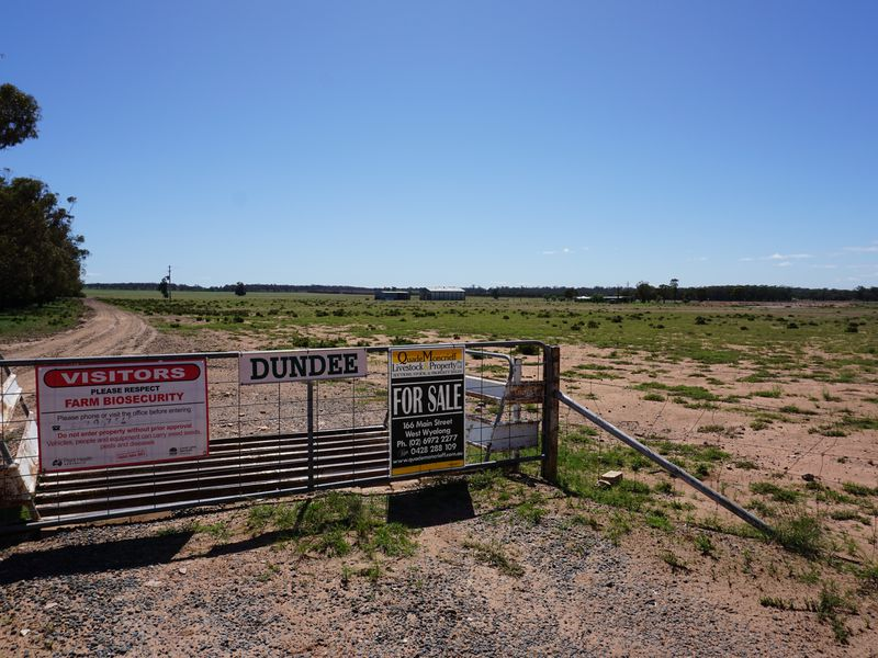 'Dundee' 603 Charcoal Tank Road, West Wyalong