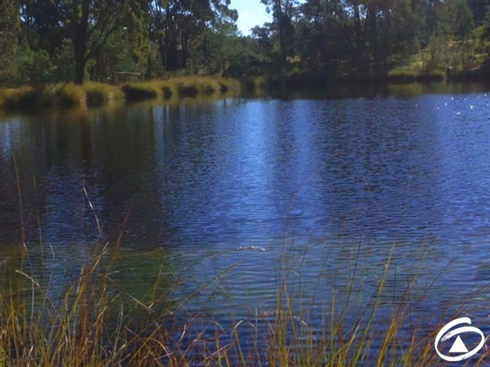 2099 Burrendong Way, Mullion Creek