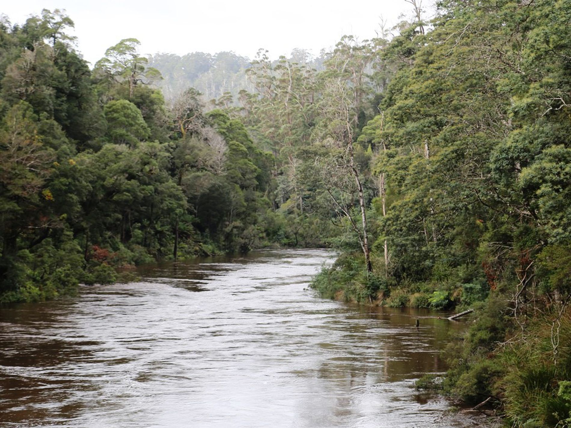 1 Meryanna Road, Trowutta