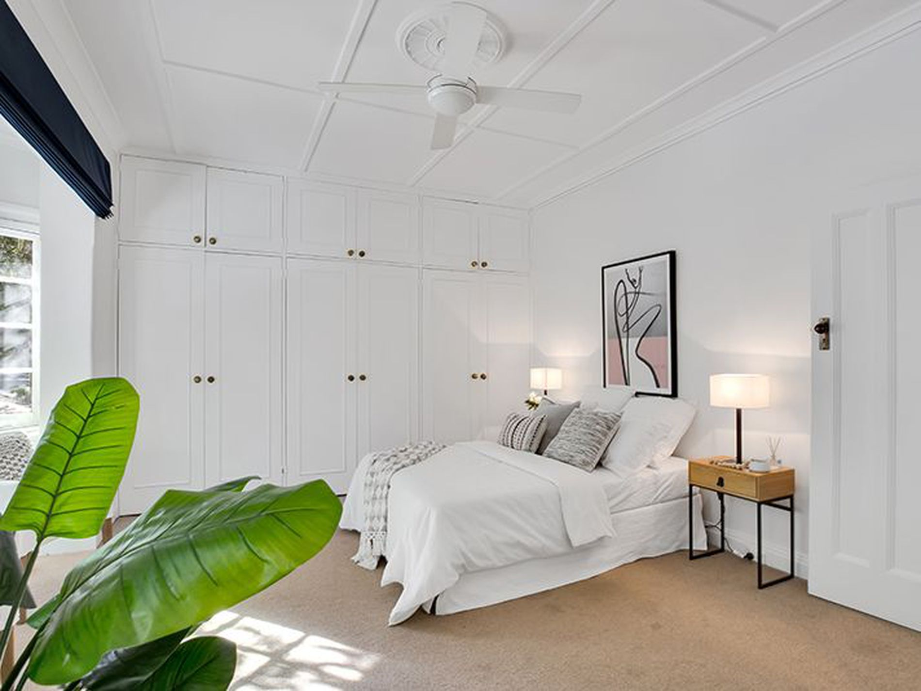 2 / 42A Bayswater Road, Rushcutters Bay