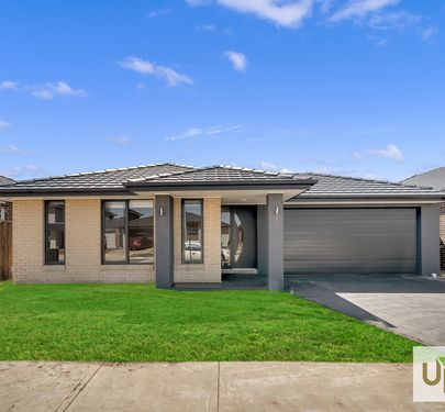 17 LANGSHAN ROAD, Clyde North