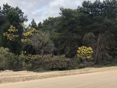 Lot 107, Island Beach Rd , Island Beach