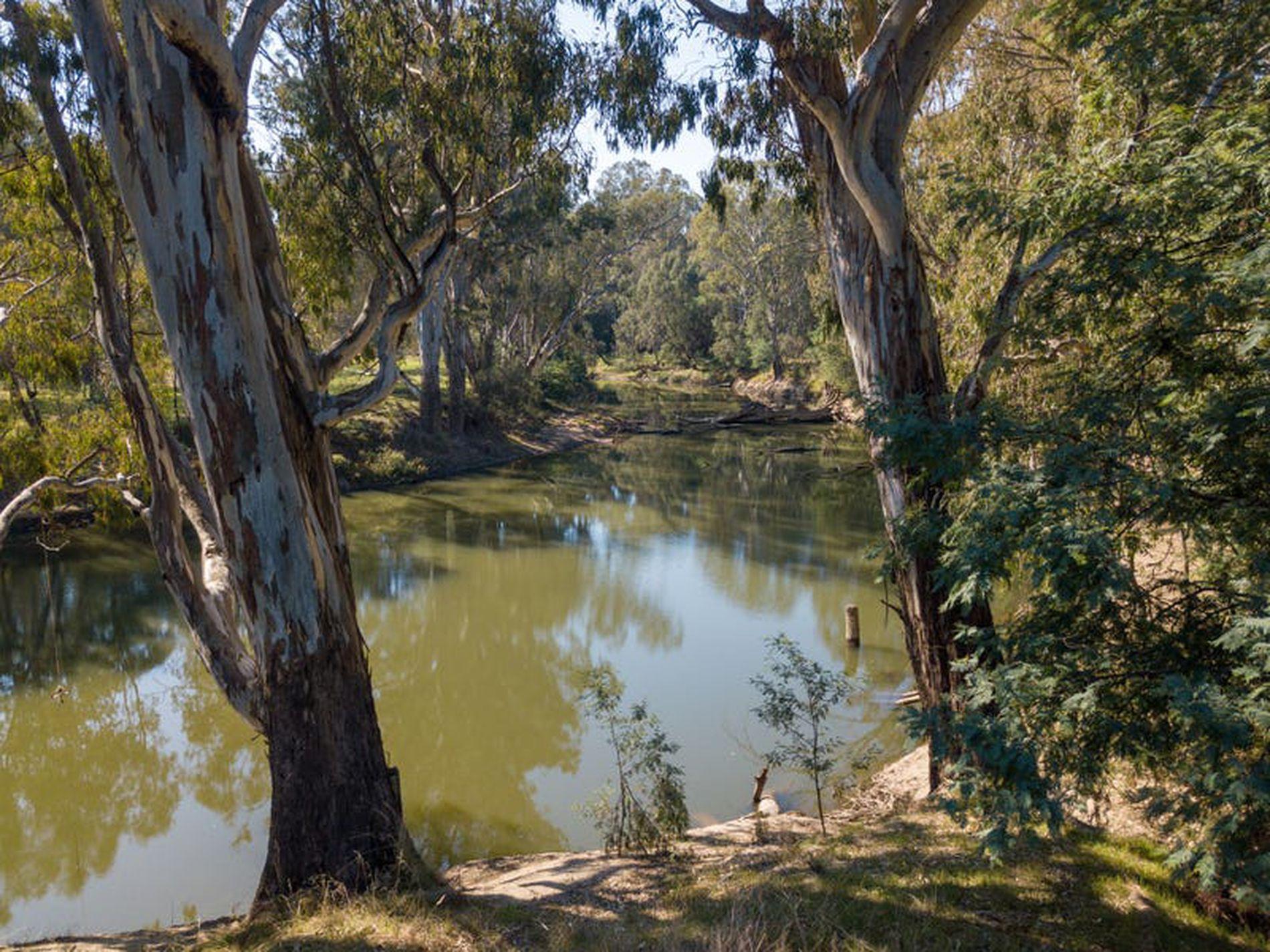 1883 Warby Range Rd, Killawarra