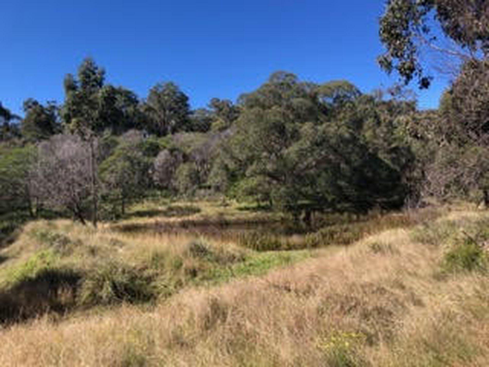 Elbow Valley