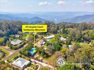 23 Caryota Court, Tamborine Mountain