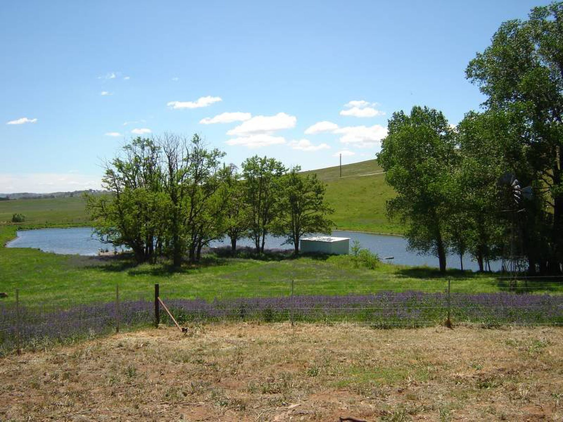 Coombing Park Mid Western Highway, Carcoar