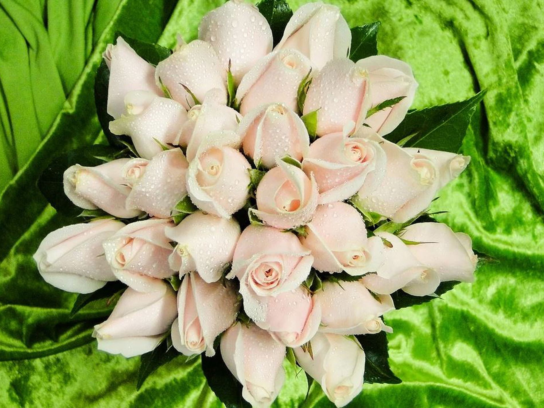 Bayside Florist for Sale