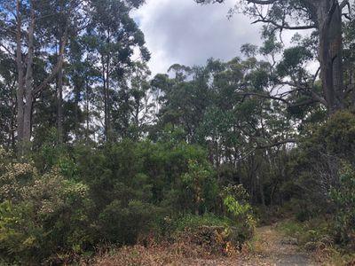 149 Esperance Coast Road, Surges Bay