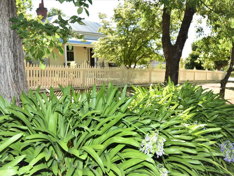15 WILLIAMS STREET, Beechworth