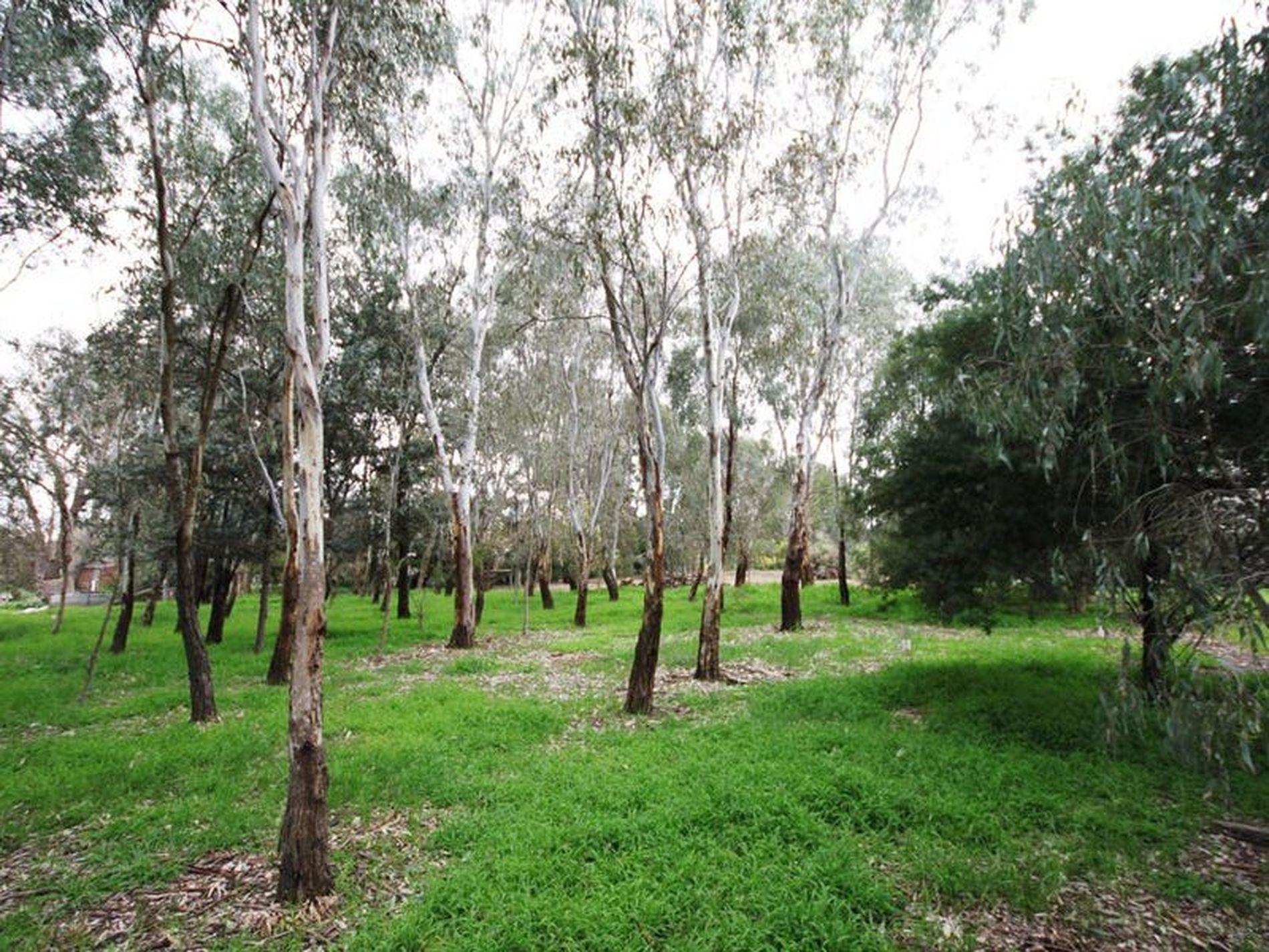 27 Milawa- Bobinawarrah Road, Milawa