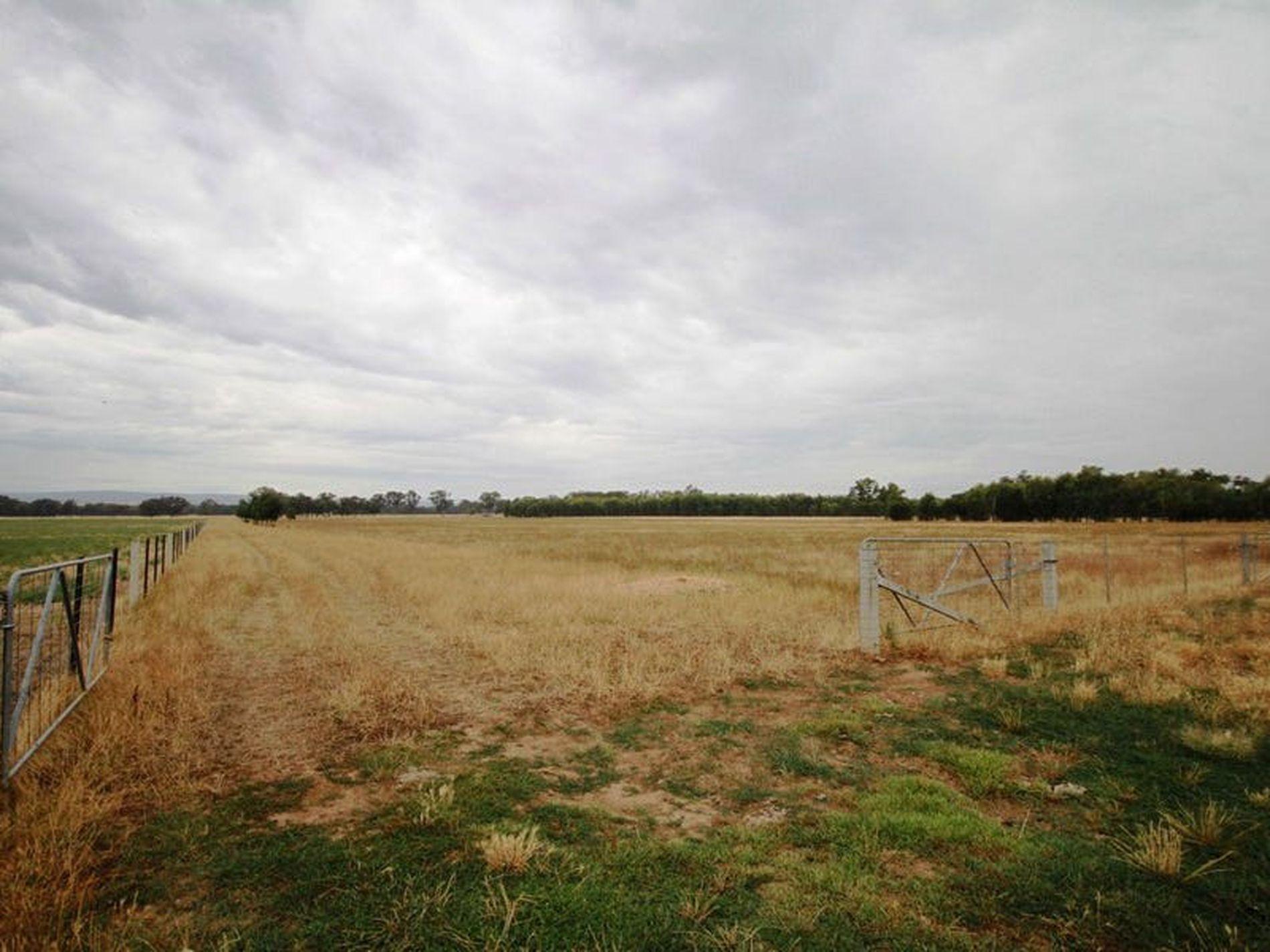 Londrigan-Tarrawingee Road, Londrigan