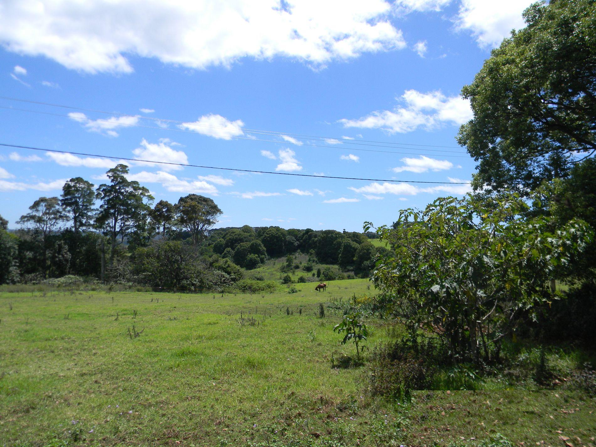 70 Macadamia Drive, Maleny