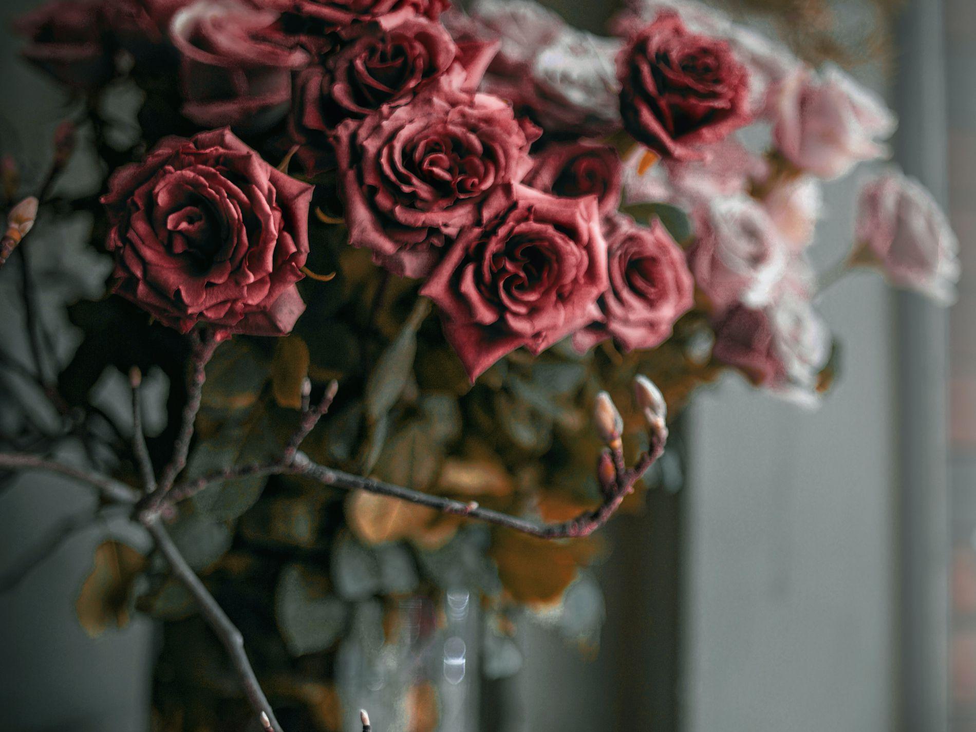 XMS20210103 Garden of Eden Florist