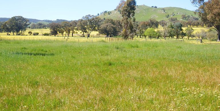 Lot 11B, Dunnings Road Balmattum...