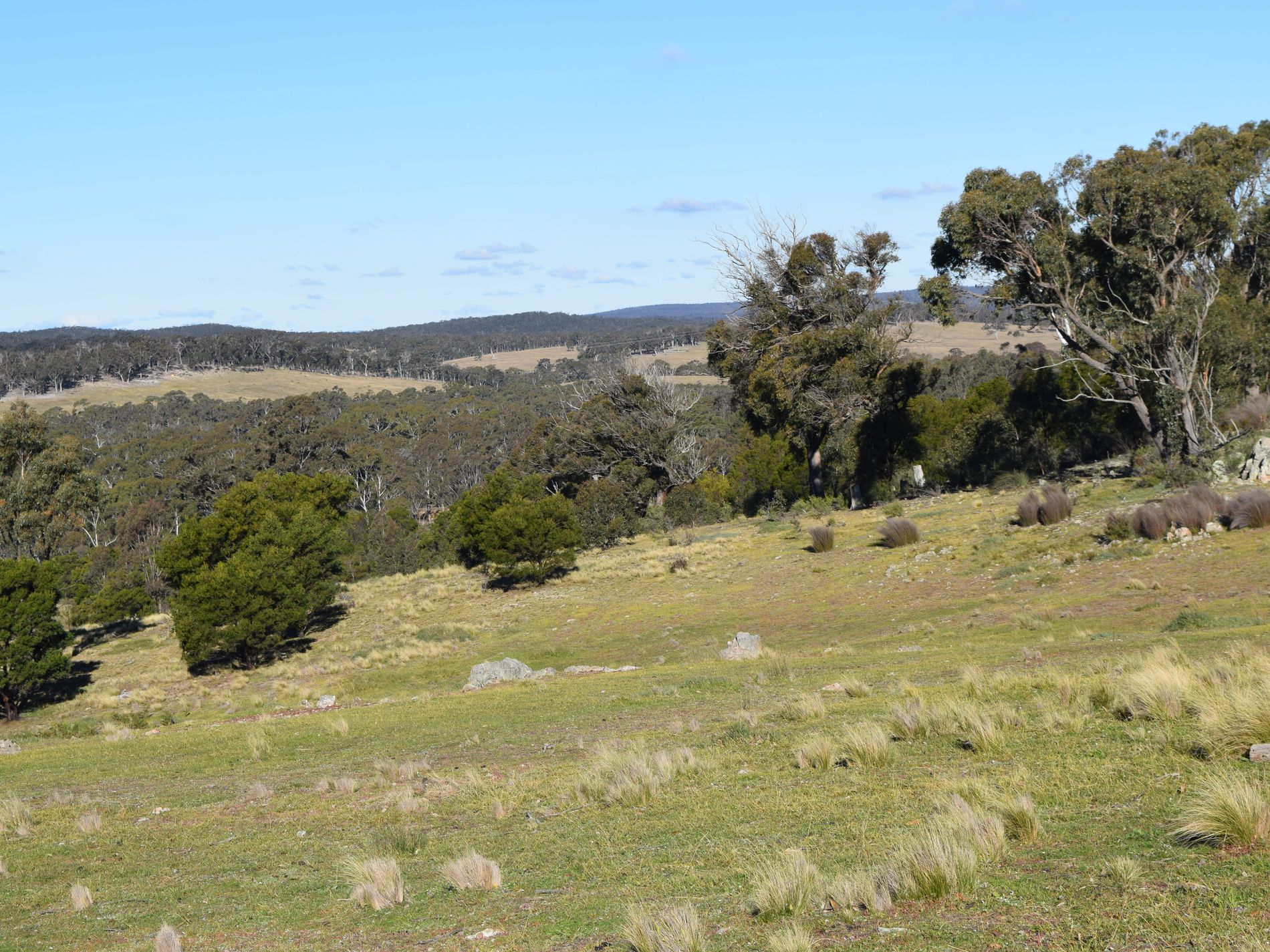 Lot 20, 616 Marian Vale Road, Boxers Creek