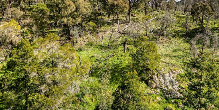 2060 Creightons Creek Road, Creightons Creek