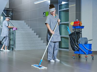 Cleaning and Garden Service Business for Sale