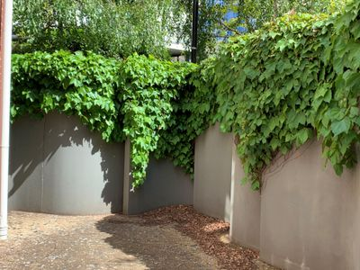 G02 / 9 Commercial Road, Melbourne