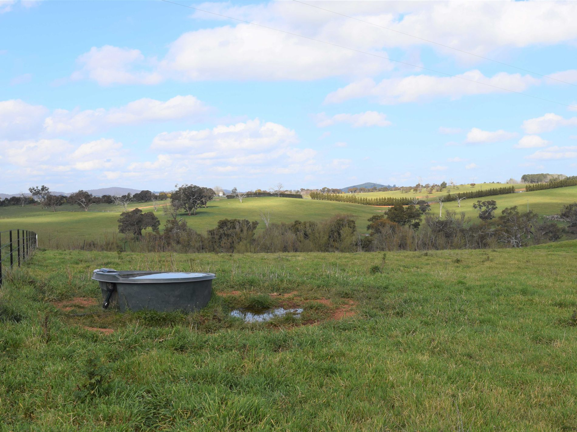 Lot 10, Walgrove Road, Yass