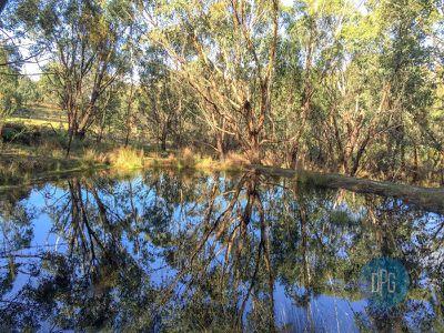 24 Bushland Close, Barwite