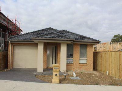 37 Danthonia Street, Coburg