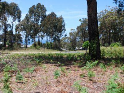 25 Kangaroo Run, Tura Beach