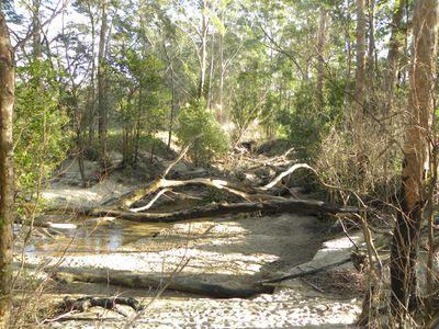 Lot 40, Lot 40 Hancocks Creek, Wandandian
